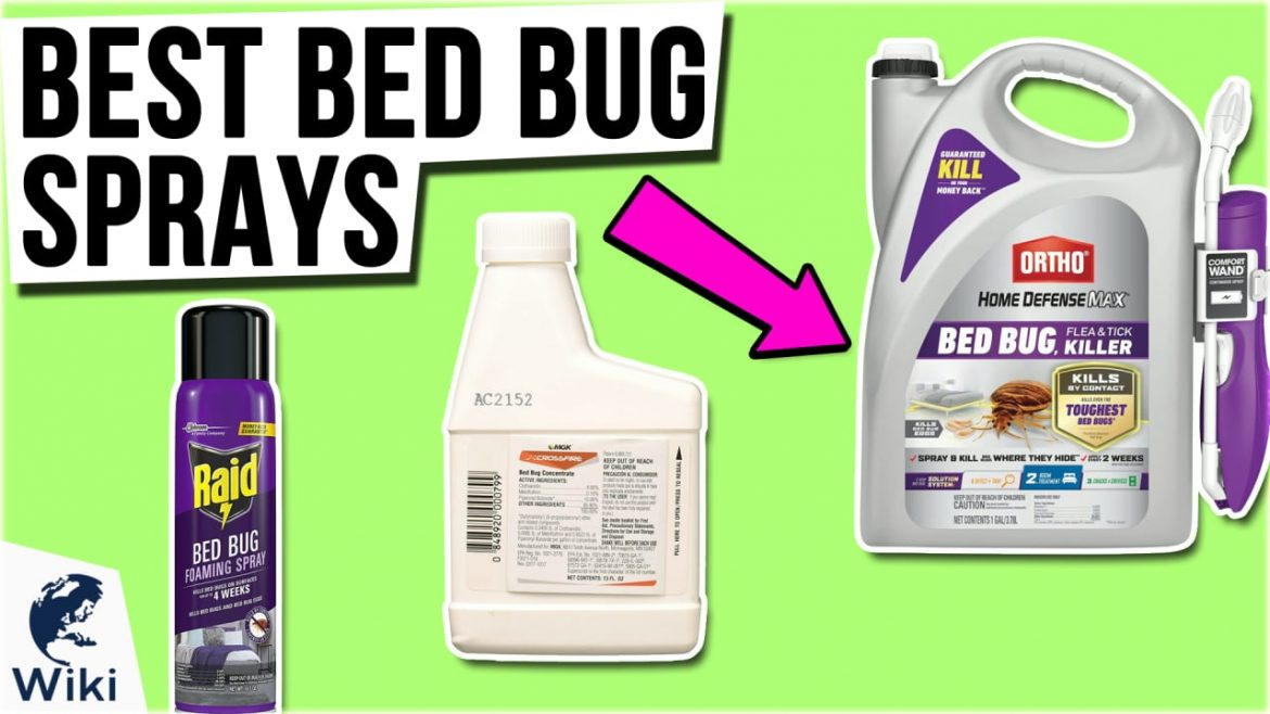 Leading Ranked Bed Insect Repellent Is Important To Your Success